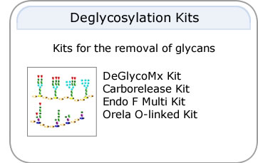 Deglycosylation Kits