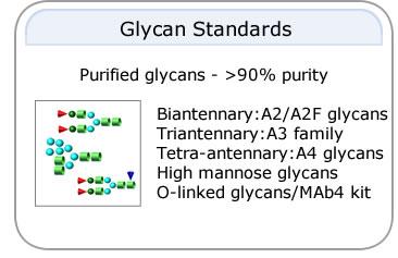 Glycan Syandards