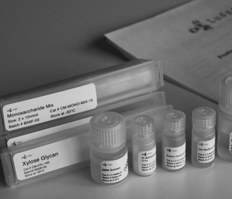 Monosaccharide Analysis Kit Image