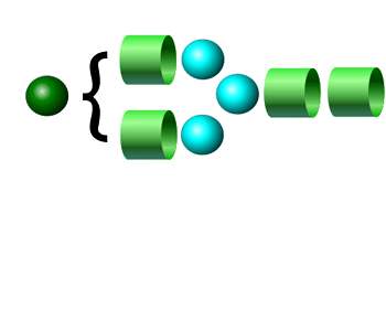 A2G1 2-AB Glycan