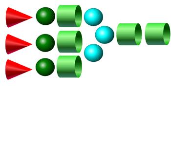 A3 2-AA glycan