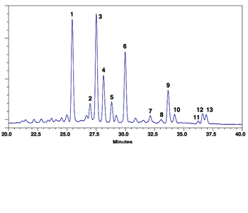 IgG glycoprotein standard