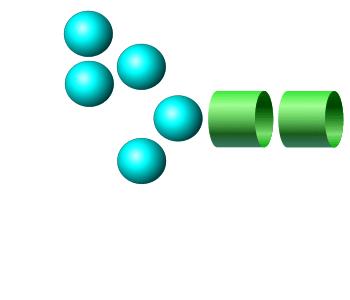 Man-5 APTS glycan