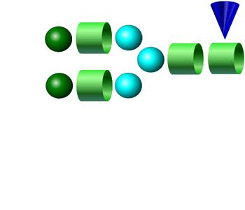 NA2F APTS glycan (G2F)