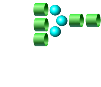NGA3 2-AB glycan