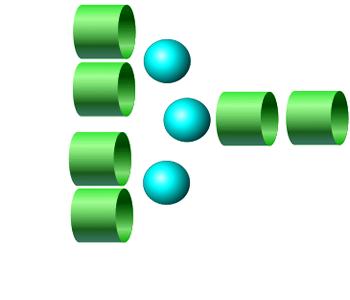 NGA4 2-AA glycan