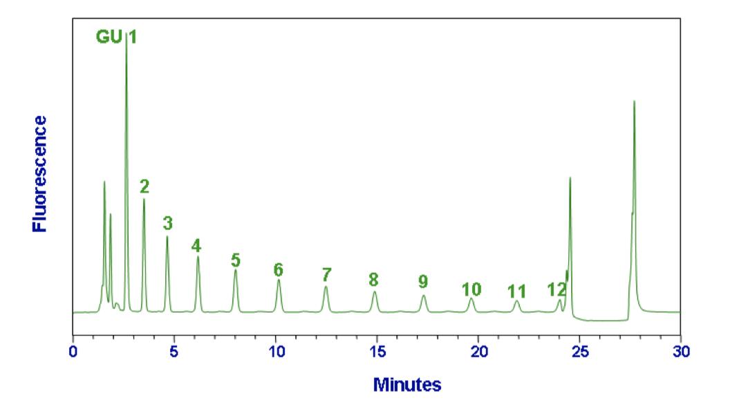 N2 4.6mm normal phase column