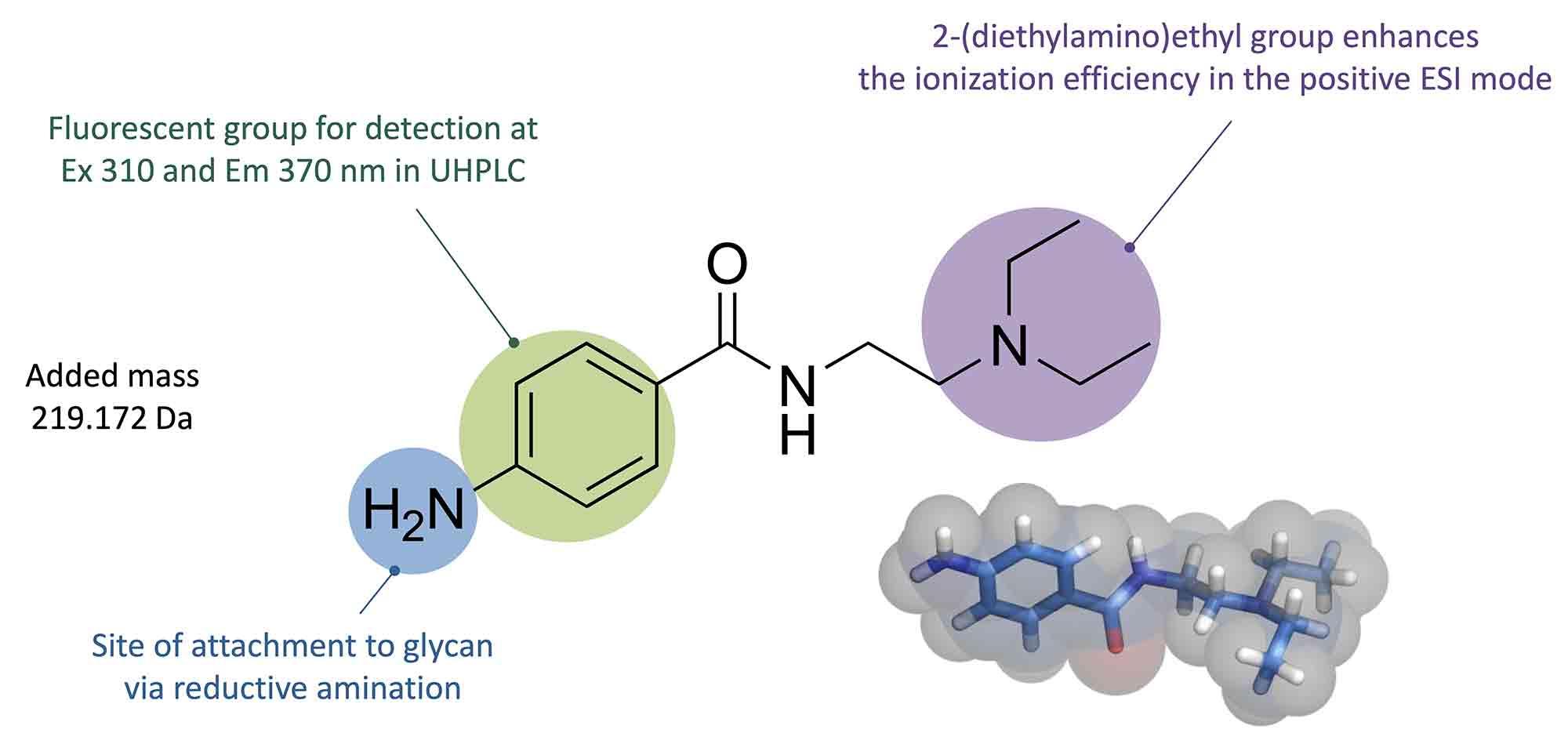 procainamide molecular structure image