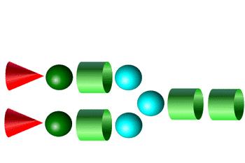 A2 Glycans- 2-AB