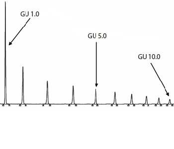 Procainamide labeled GHP