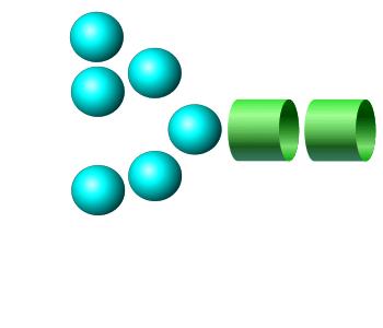 Man-6 procainamide glycan
