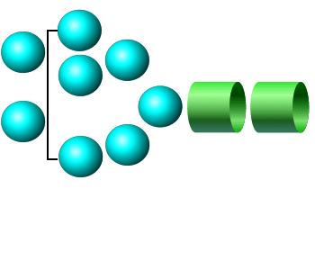 Man-8 procainamide glycan