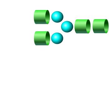 NGA2 procainamide glycan