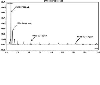 procainamide glucose homopolymer