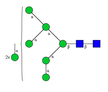quantitative man8 glycan