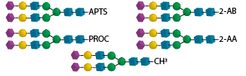 Labeled Glycans