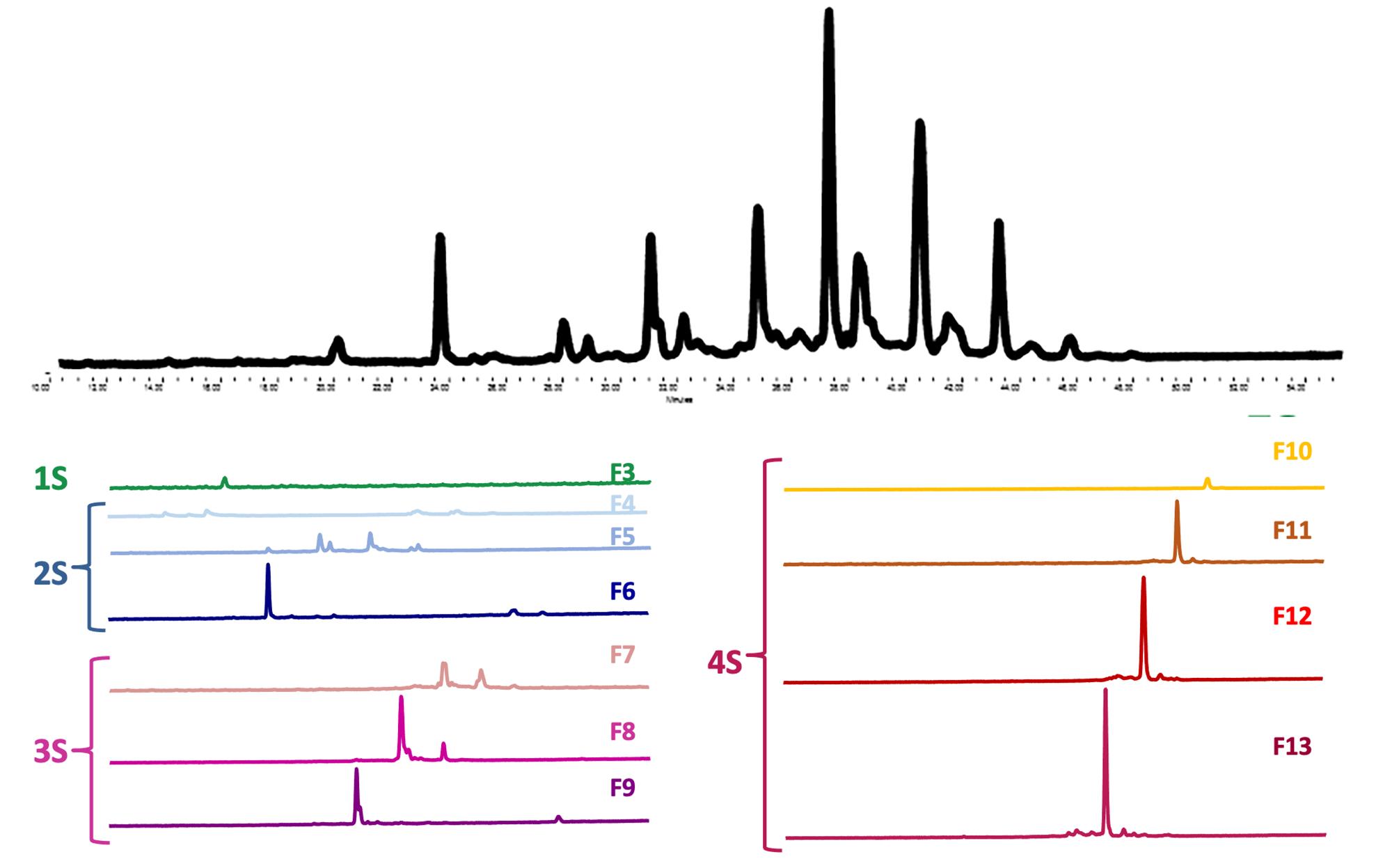 wax glycan analysis2 image